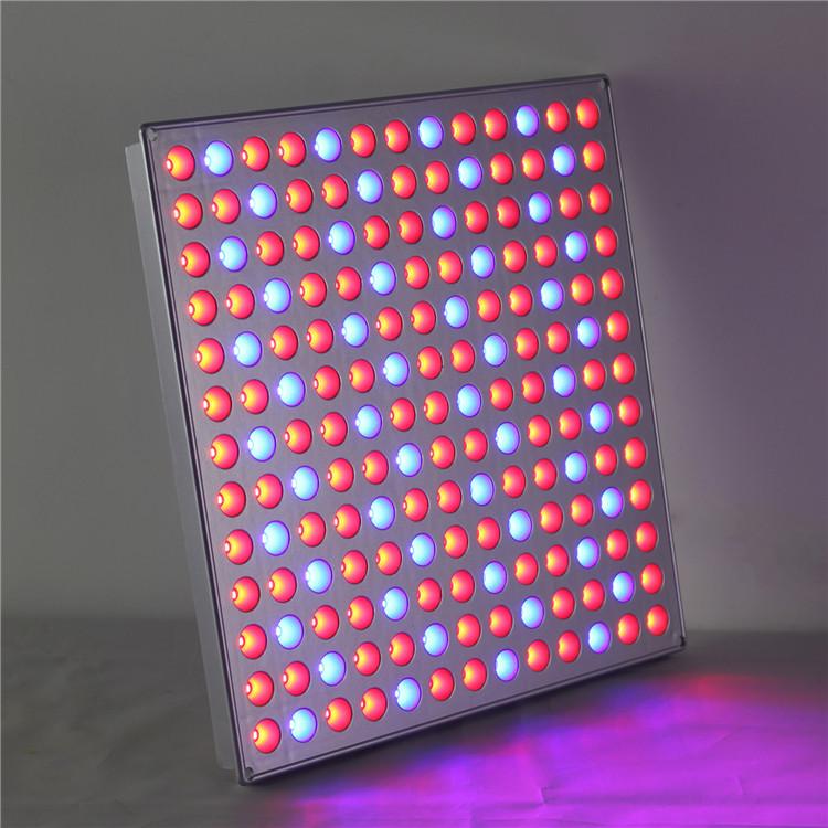 1 LED Grow Light HY-MD-D169-S